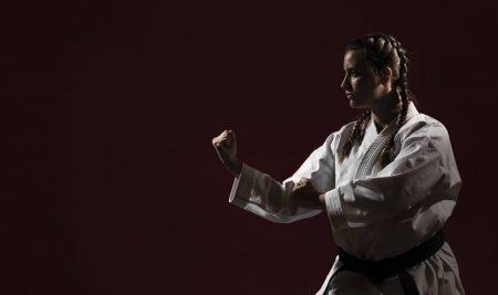 O Reino Proibido – Explicando a estrutura de um Sistema de Kung Fu